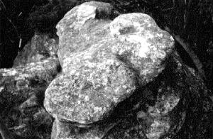 Serpent Altar Discovered in1965 by Rex Gilroy
