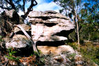 Serpent Headed Rock